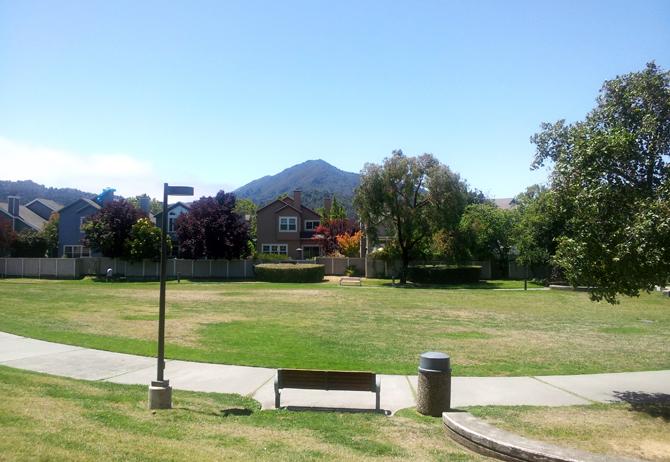 Mt. Tamalpais, July 27, 2012
