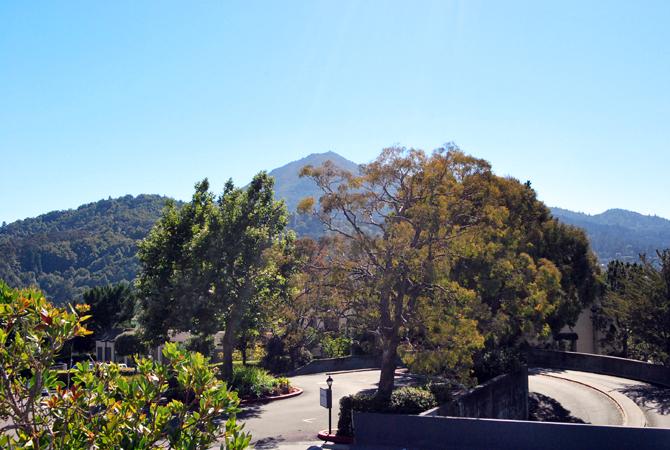 Mt. Tamalpais, August 1, 2012
