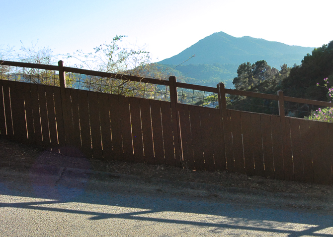 Mt. Tamalpais, August 13, 2012