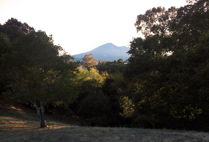 Mt. Tamalpais, August 18, 2012