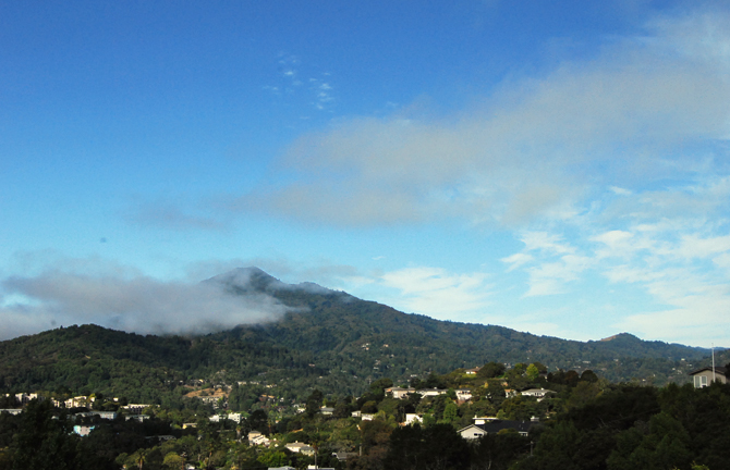 Mt. Tamalpais, August 3, 2012