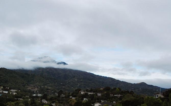 Mt. Tamalpais, August 4, 2012