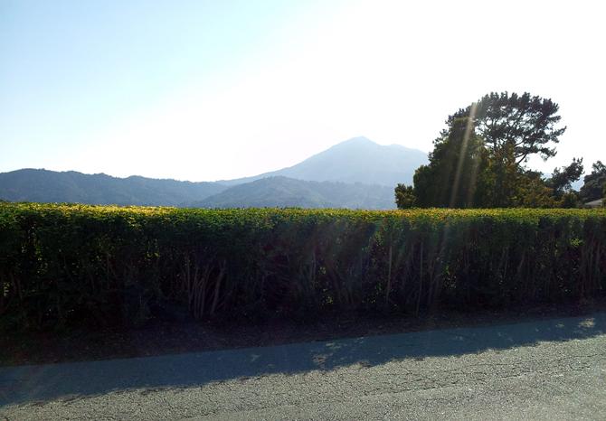 Mt. Tamalpais, September 1, 2012