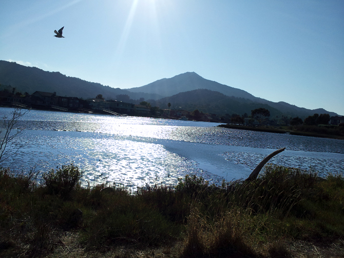 Mt. Tamalpais, September 28, 2012