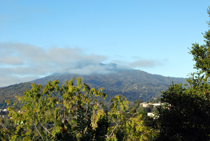 Mt. Tamalpais, September 17, 2012