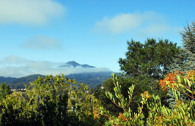 Mt. Tamalpais, September 24, 2012