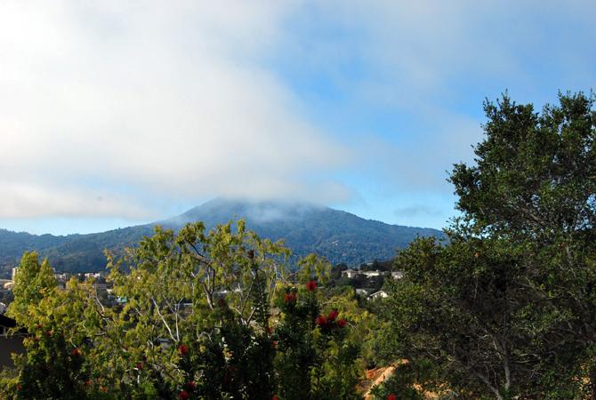 Mt. Tamalpais, October 14, 2012