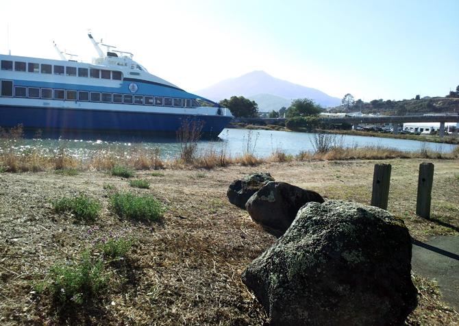 Mt. Tamalpais, October 18, 2012