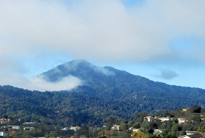 Mt. Tamalpais, October 20, 2012