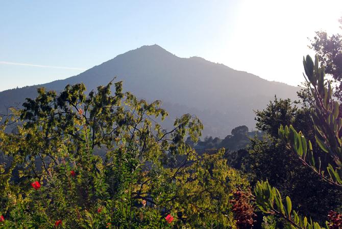 Mt. Tamalpais, October 2, 2012