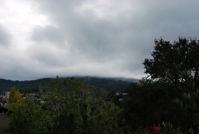 Mt. Tamalpais, October 31, 2012
