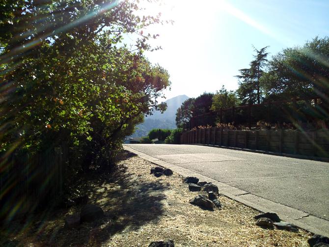 Mt. Tamalpais, October 7, 2012
