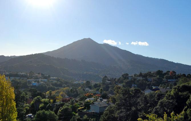 Mt. Tamalpais, November 10, 2012