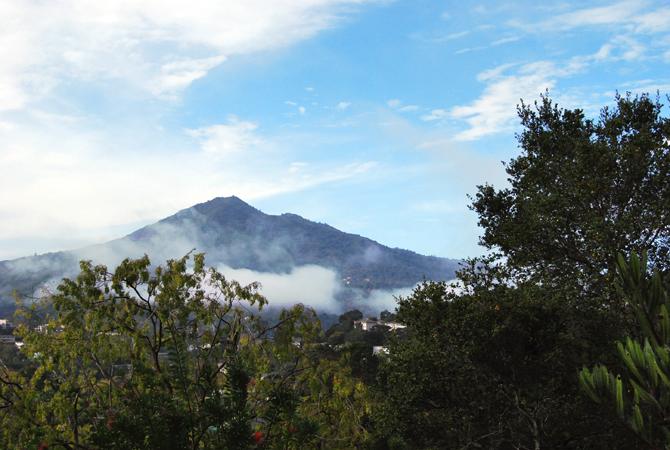 Mt. Tamalpais, November 1, 2012