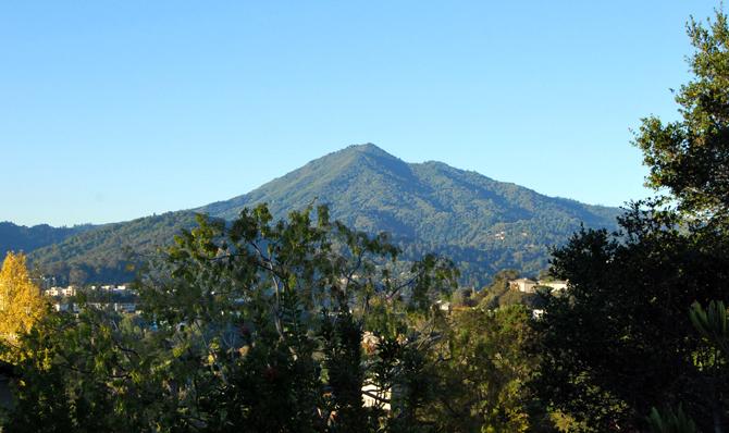 Mt. Tamalpais, November 12, 2012