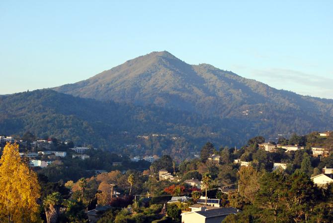 Mt. Tamalpais, November 15, 2012