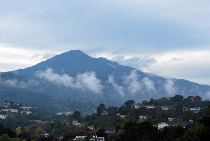 Mt. Tamalpais, November 16, 2012