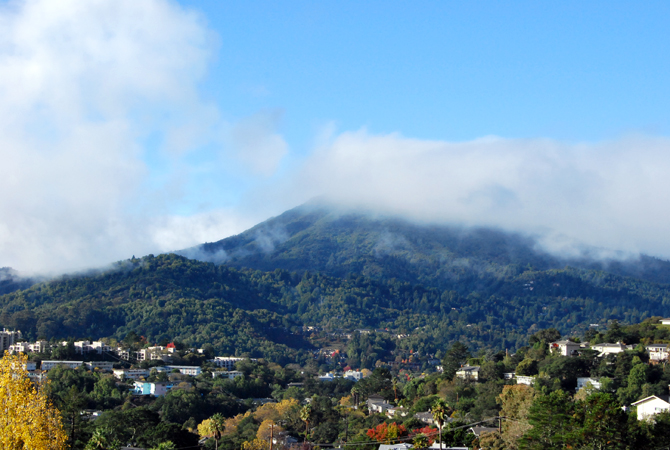 Mt. Tamalpais, November 17, 2012
