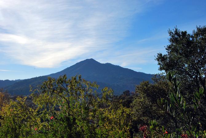 Mt. Tamalpais, November 24, 2012