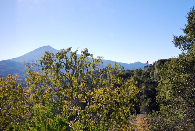 Mt. Tamalpais, November 2012