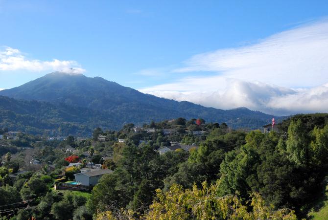 Mt. Tamalpais, December 11, 2012
