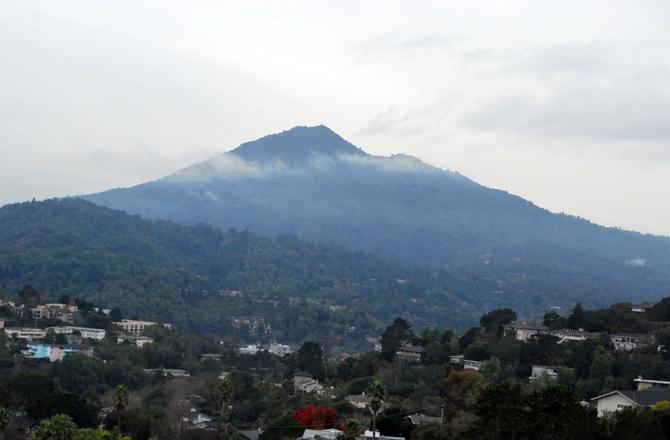 Mt. Tamalpais, December 14, 2012