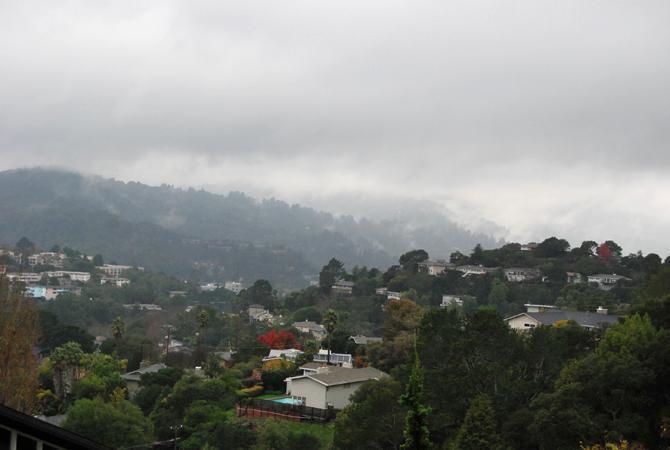 Mt. Tamalpais, December 15, 2012