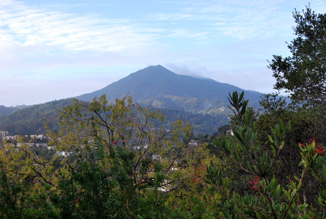 Mt. Tamalpais, December 17, 2012