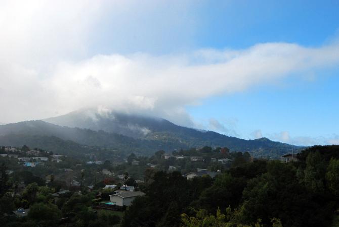 Mt. Tamalpais, December 2, 2012