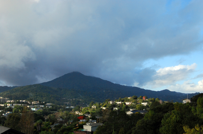 Mt. Tamalpais, December 22, 2012
