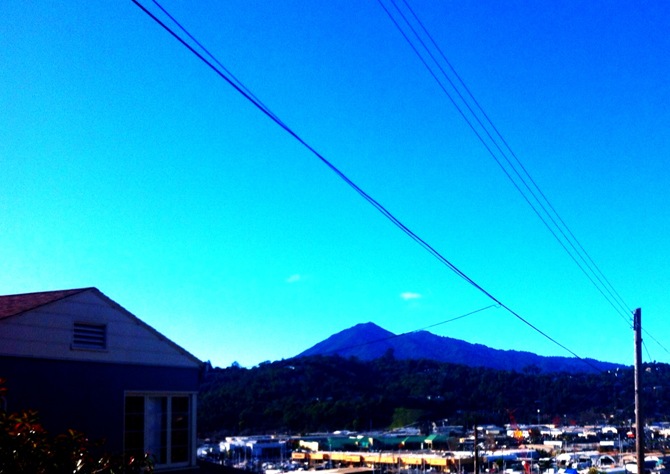 Mt. Tamalpais, December 27, 2012