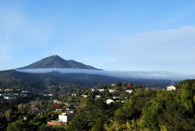 Mt. Tamalpais, December 3, 2012