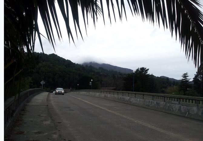 Mt. Tamalpais, December 4, 2012